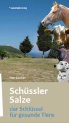 Beste Spielothek in Erlenbach im Simmental finden